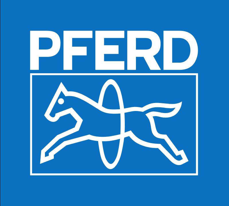 Logo PFERD-RÜGGEBERG
